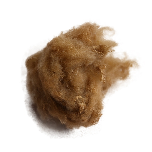 驼C黄 普通涤纶短纤维