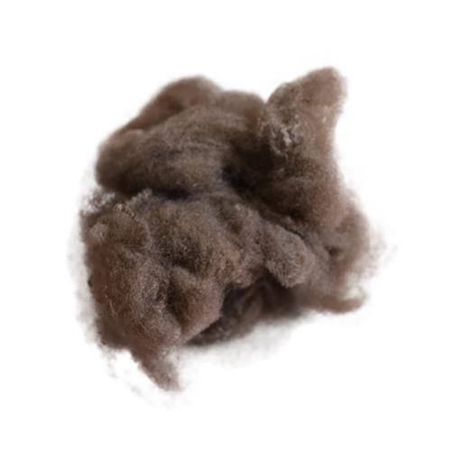 涤纶短纤维纺丝工艺